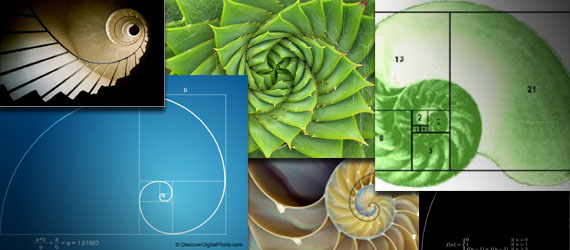 Форекс системы на фибоначчи